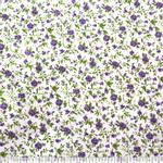 Flora-07---01004415