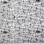 01209665-62427---Gato-feliz