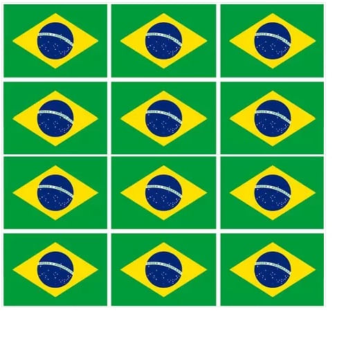 TECIDO BANDEIRA DO BRASIL NIAZI LG1,50 X 1,20 DES 01